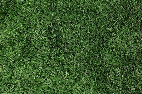מה חשוב לדעת על דשא סינטטי